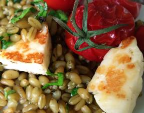 Freekeh with Roasted Tomatoes, Halloumi and a Lemon Dressing