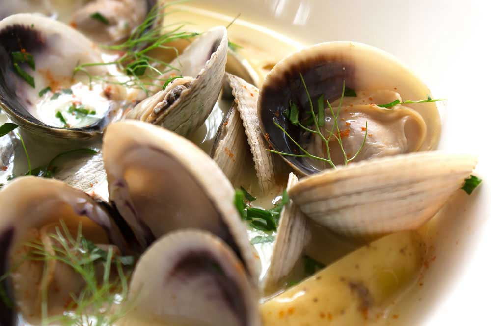 Creamy Saffron Clams. Potatoes and saffron add depth of flavour to this deliciously creamy clam recipe.