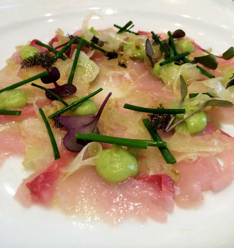 Lucio's Kingfish Crudo | Sprinkles and Sprouts