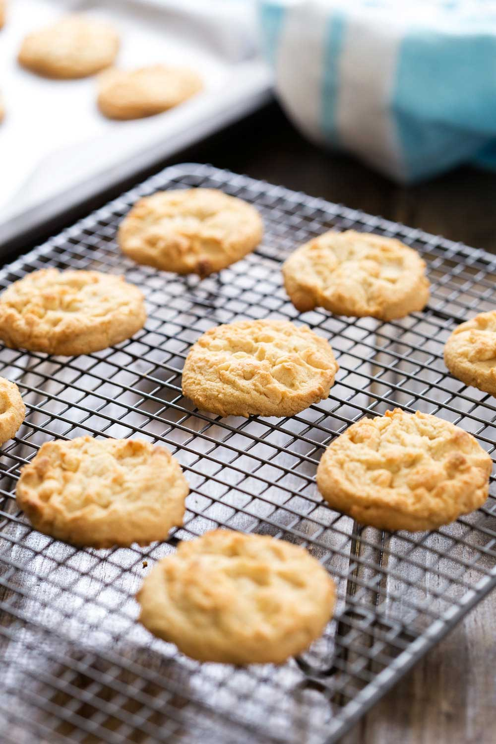 White Chocolate Chip Cookies. These nut free cookies are the perfect treat to whip up for a morning tea or for wrapping up as a hostess gift. Loaded with choc chips these are simple to make and delicious to eat. | Sprinkles and Sprouts