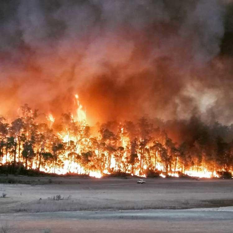 Waroona Fires. Credit Grant EikelBoom