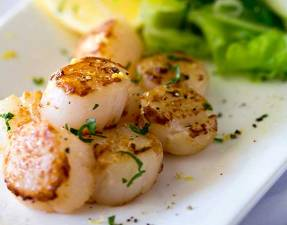 Firm buttery seared scallops, seasoned with lemon served with a fresh and crunchy apple and parsley salad with shallot dressing. | Sprinkles and Sprouts