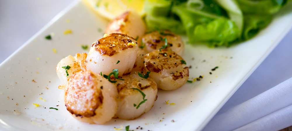 Seared Scallops with an Apple, Parsley and Shallot Salad