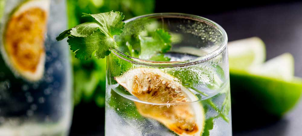 Charred Lime Gin & Tonic with Fresh Cilantro