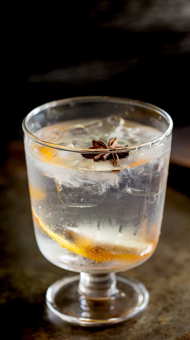 Single stemmed glass frosted over with orange gin and tonic in it and a star anise floating in the top. Dark background and table.