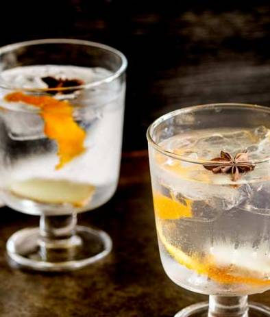 Feature Image. Ginger Star Anise and Orange Gin and Tonic.