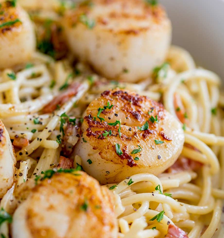 close up on a seared scallop on a bed of pasta