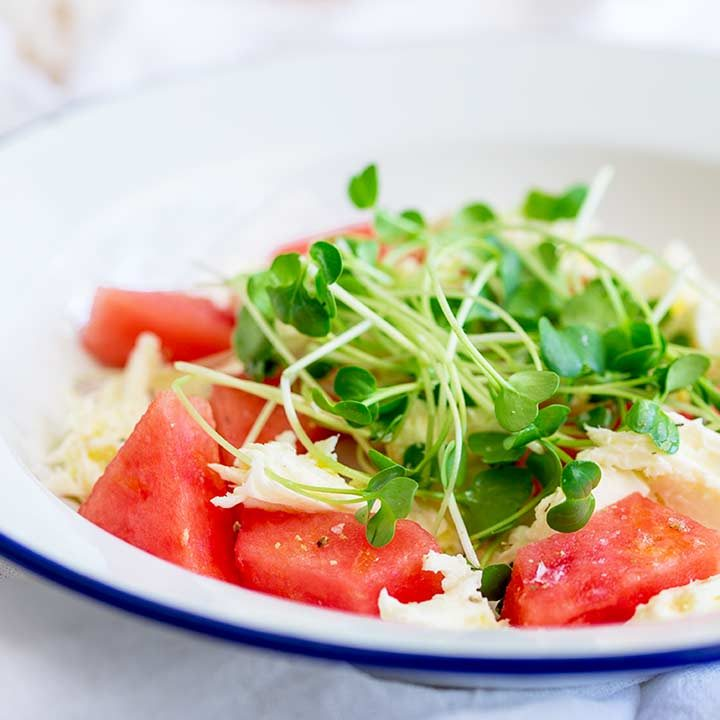 chunks of red watermelon and chunks of buffalo mozzarella in a white metal bowl with a blue rim.