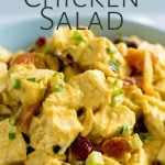 close up on the chicken salad with text at the top