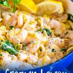 picture of lemon shrimp pasta with text at the bottom