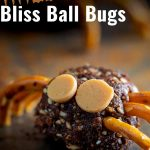 close up on a bliss ball turned into a bug with text at the top