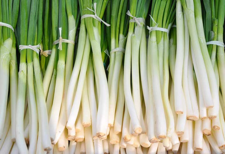 bunches of green onions stacked on top of each other