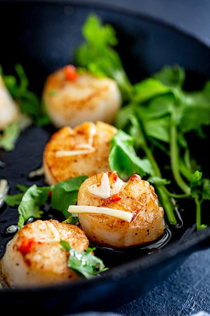 Close up on seared scallops with chili, garlic and ginger sprinkled over and cilantro at the side