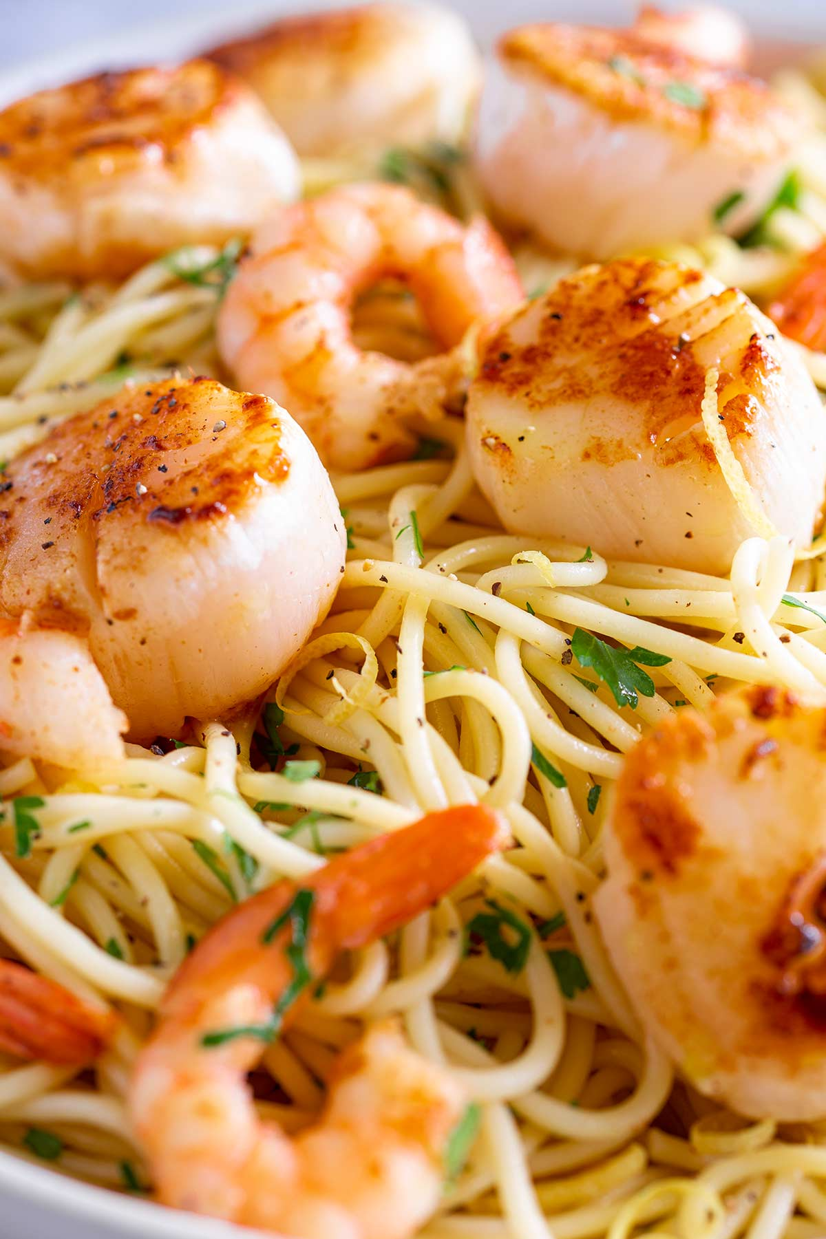 close up of the shrimp and scallop scampi